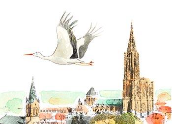 cigogne et cathedrale