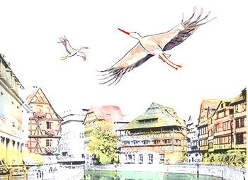Les Cigognes 224 Strasbourg L Atelier D Elise